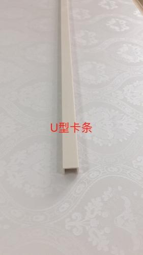 邵阳U型卡条